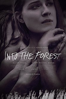 Ormana Doğru – Into the Forest izle full hd